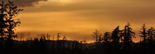 trees sunset orange black clouds sydney vancouverisland deepcove f22 silhoutte wispy 105mm 18105mm mikeandmannies 567682