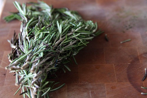 rosemary | by robin.salant