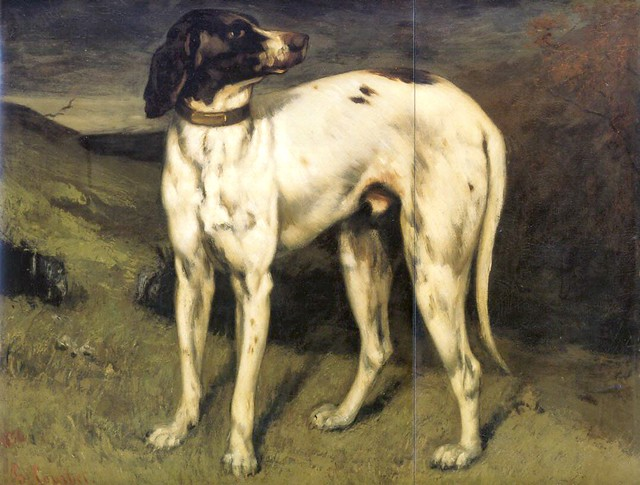 Gustave Courbet: A dog from Ornans (1856)