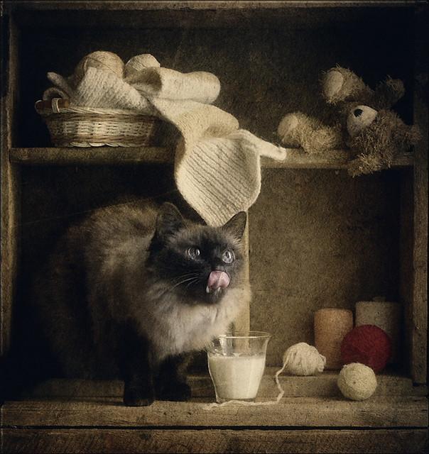 Любительница молока