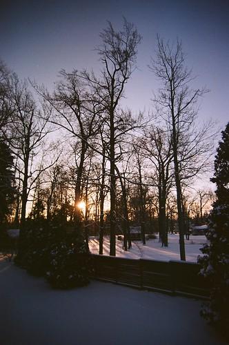 morning trees winter snow silhouette sunrise nikon michigan unedited 0910 n65 orchardlake