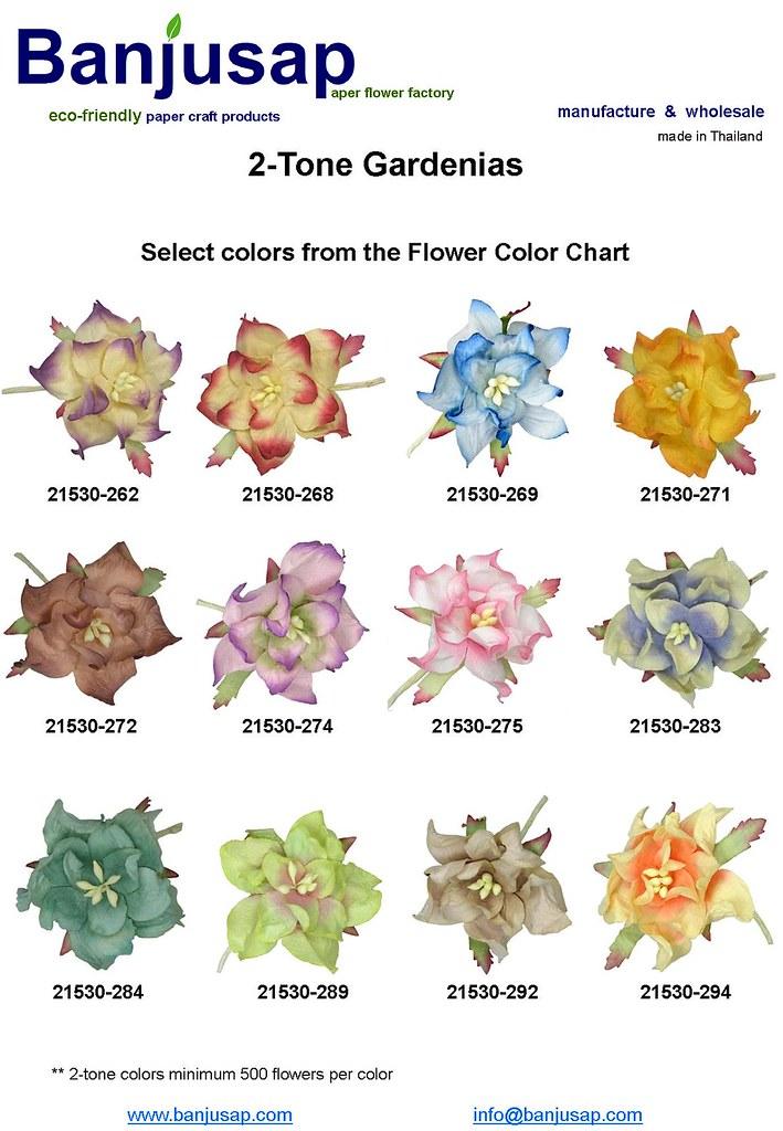 2,Tone Gardenia Colors