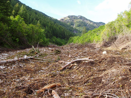 Avalanche debris on the trail to Cascade Mountain.