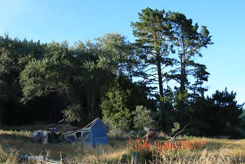 newzealand sun building sunrise abandonedhouse gisborne rangiwaho