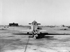 North American : AT-6F : Texan   by San Diego Air & Space Museum Archives