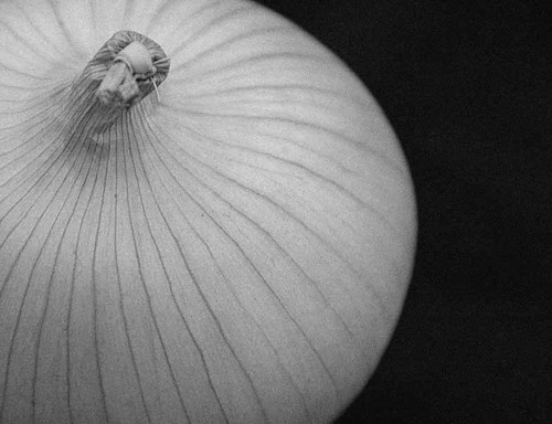 Onion 0808 7212bwi | by Ross Elliott
