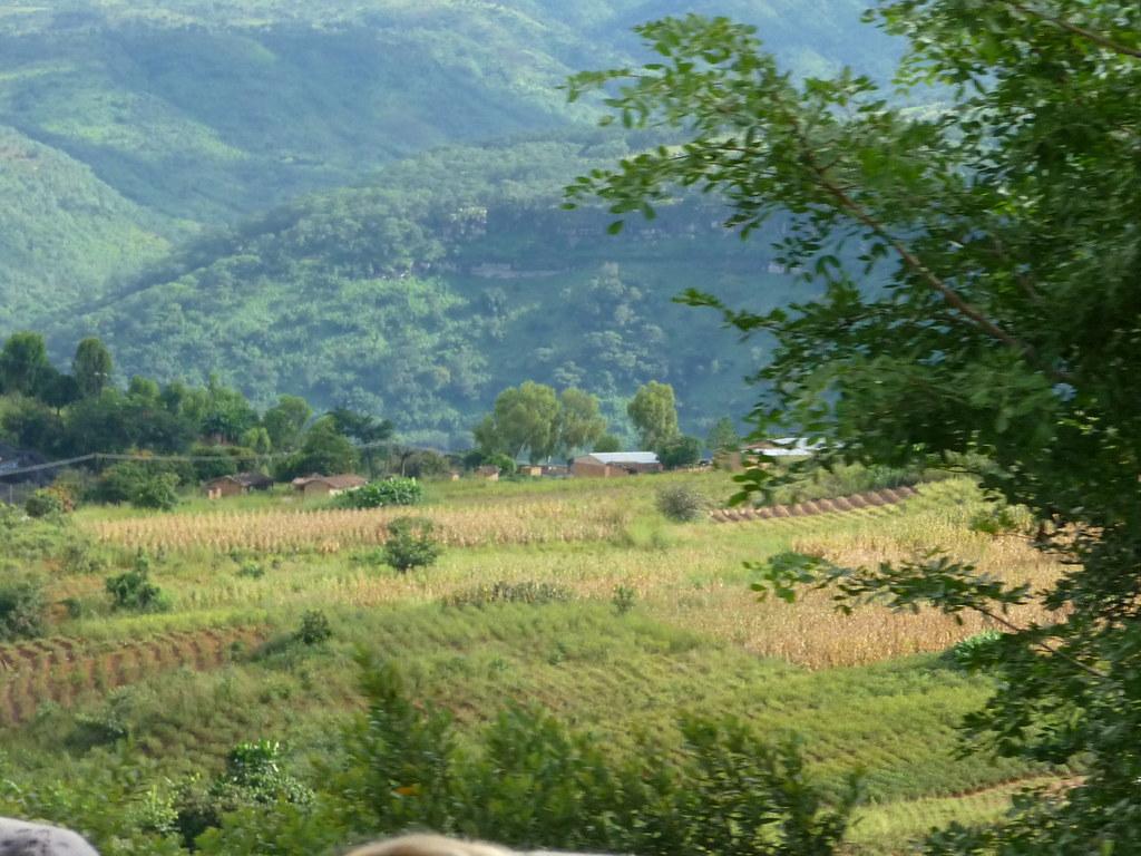 news about Malawi