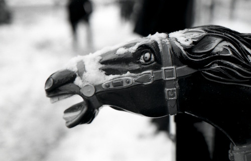 coin operated horsie