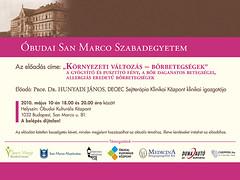 2010. április 15. 11:06 - San Marco Szabadegyetem: Prof. Dr. Hunyadi János
