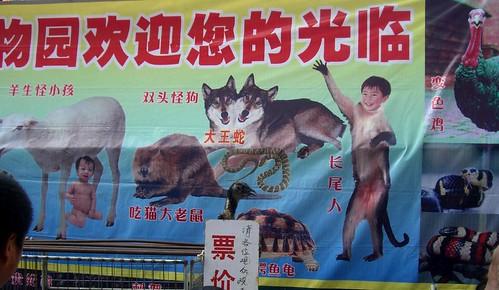 Chinese Freak Show