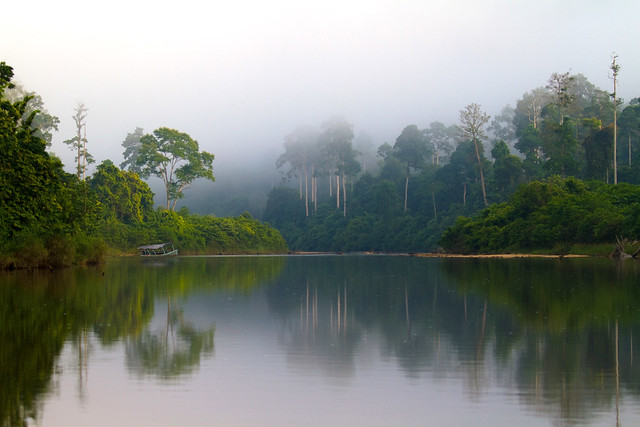 0117 The Endau River and its morning mist--Johor , Malaysia