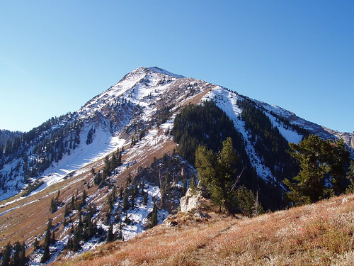 The summit and final pitch of Box Elder Peak.