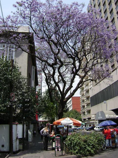 Hotel Galeria Plaza, Zona Rosa, Ciudad de México/Mexico City - www.meEncantaViajar.com