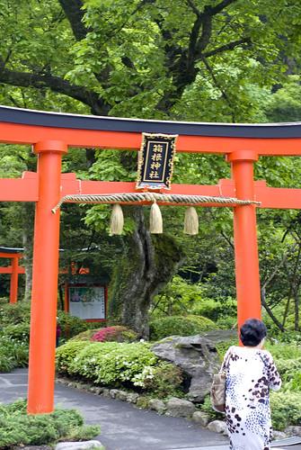 Tokyo 2 -箱根、富士 | by icools