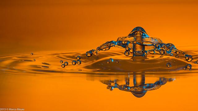 Dropzone gelb-blau Schirmchen