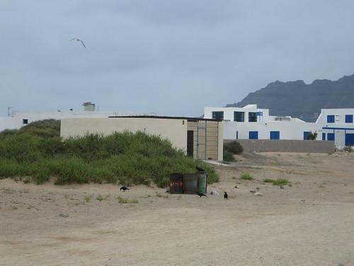 Graciosa Lanzarote 106