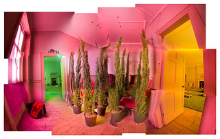 Fir / Conifer Tree Room 180° Composite Panorama - Brian Eno Speaker Flowers Sound Installation at Marlborough House | by Dominic's pics