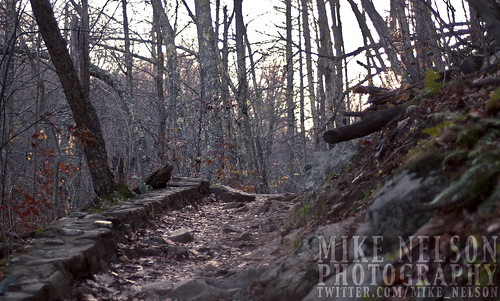 The Trail | by Anamorphic Mike