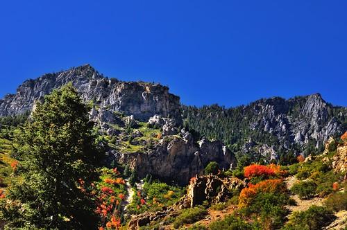 nature mountainside portfolio alpineloop uintanationalforest project365 colorefexpro nikond90 breathtakinglandscapes colorsoftrees driveinsidetimpanogoscavenationalmonument