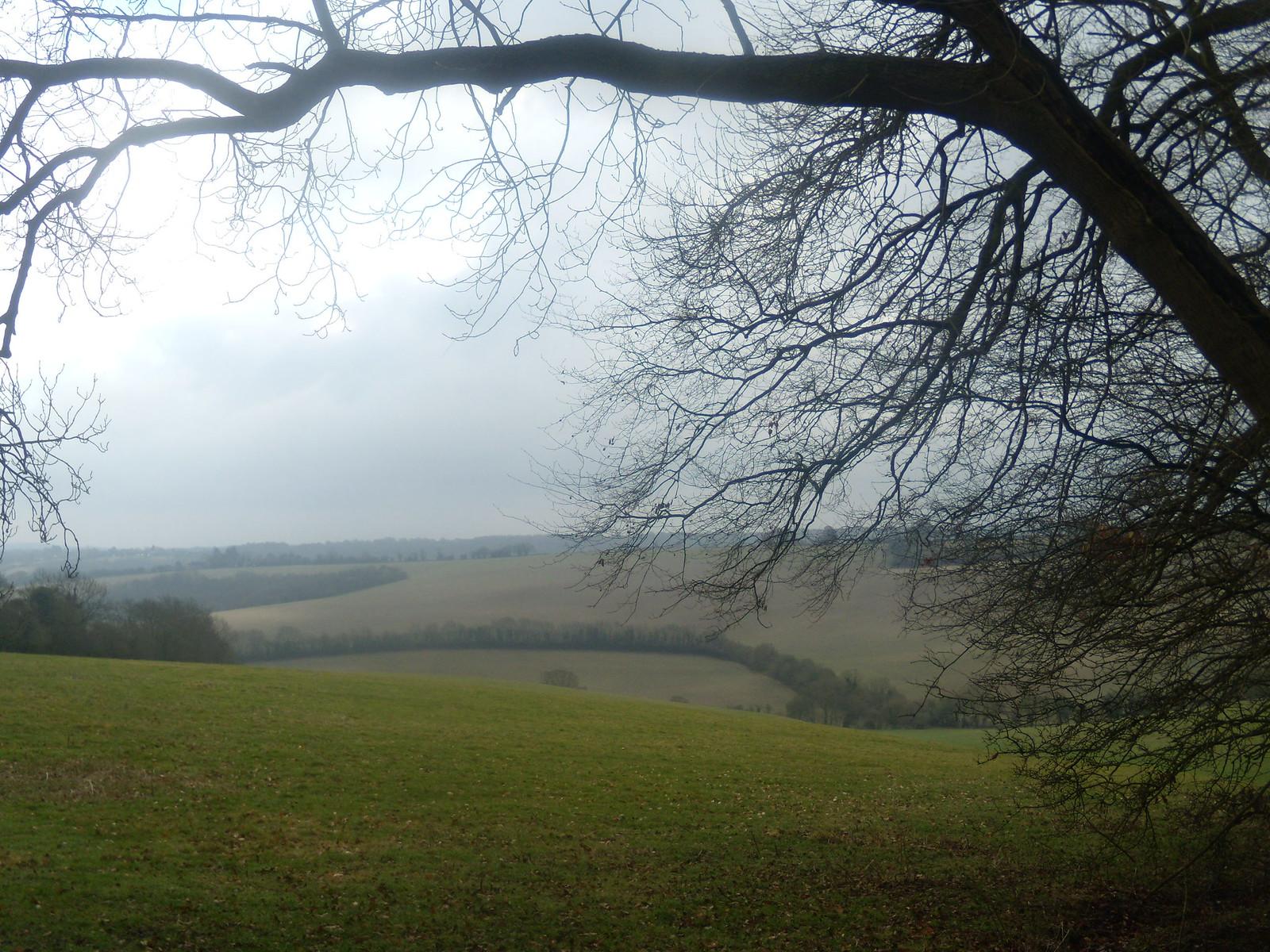 View DSCN9139 Saunderton Circular via Bledlow