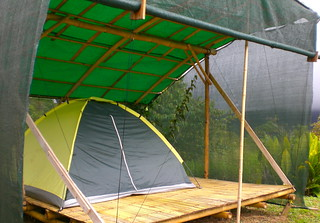 Shaded bamboo platform campsite | by Simply Loving Living Life