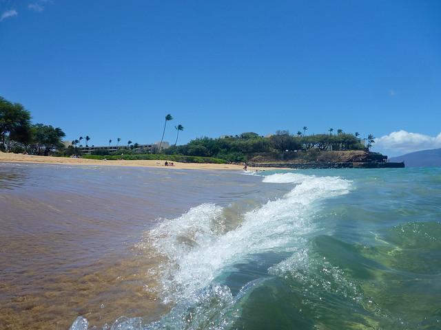 Hawai'i 1010090