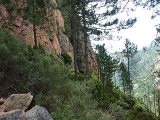 Montée au col 750 m : fin du versant W de Punta Russa