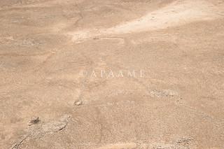 Hibabiya Kite 71   by APAAME