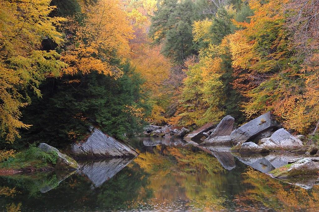 Slippery Rock Creek by mikestuf