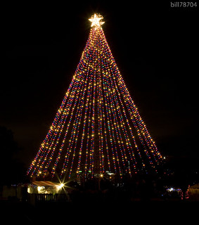 Zilker Christmas Tree | by bill78704