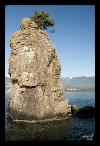 ocean canada rock vancouver nikon bc pacificocean stanleypark siwashrock d300 pregamechallenge