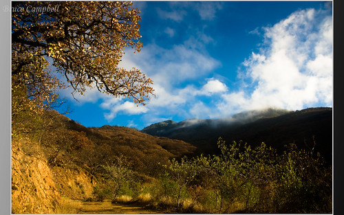 Nature Hike above  the city of Oaxaca   by b.campbell65