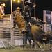 Bull Riding 2