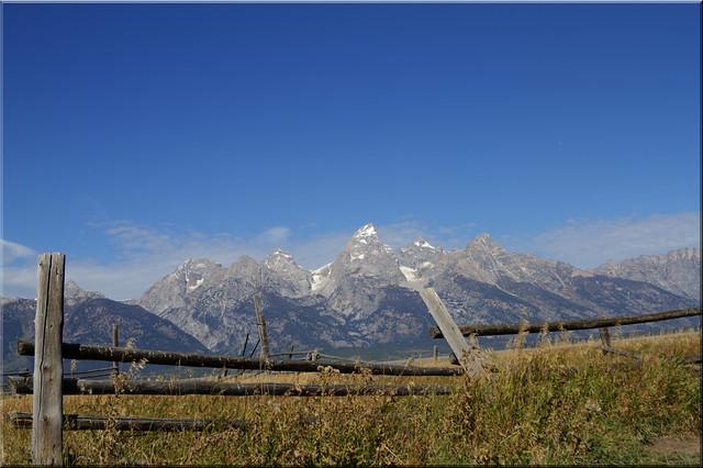 Tilting Teton Fence