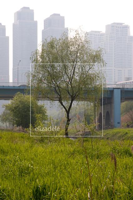 Gaepo-dong7web