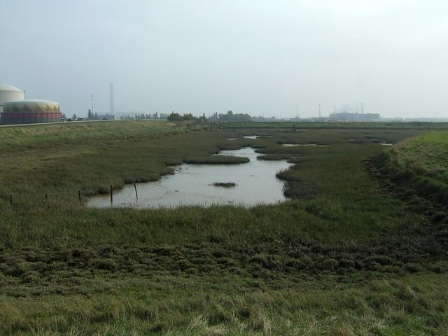 Colemouth Creek near Grain