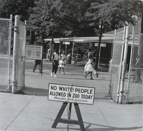 NO WHITE PEOPLE ALLOWED IN ZOO TODAY