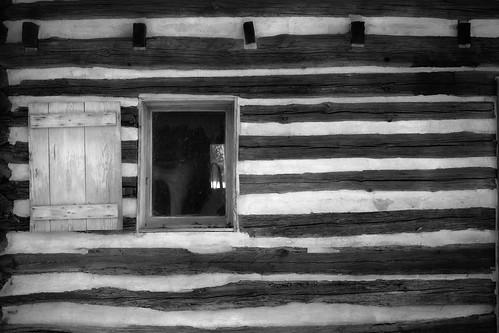 aiken southcarolina winter loghouse logcabin vernaculararchitecture carlfbagge