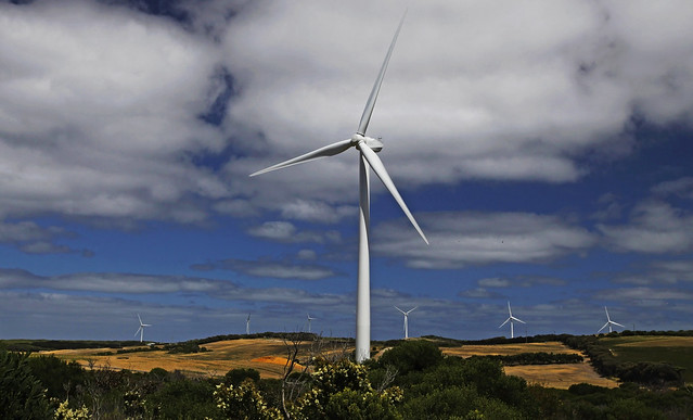 Cape Nelson Wind Farm