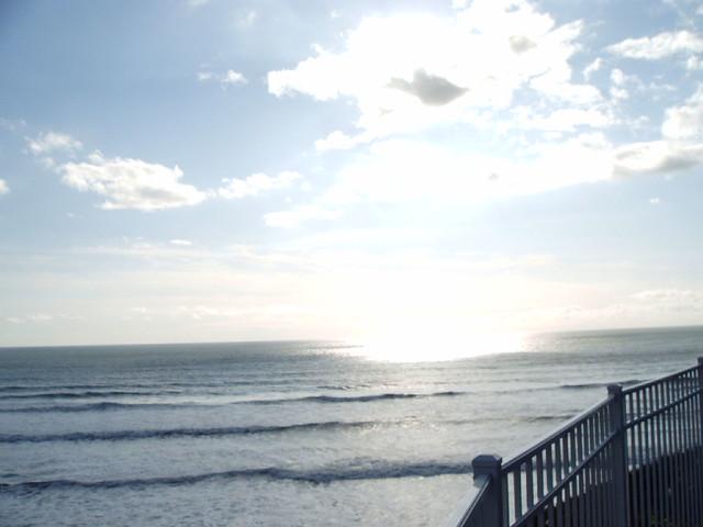 Pismo Beach 2_20_10 024