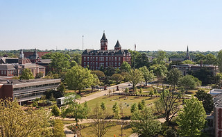 Auburn from the Eagle's nest   by carterse