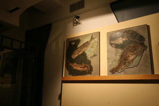 Fish mosaics at Centrale Montemartini, Rome