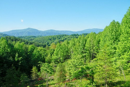 mountain big walnut ridge appalachian hump roan grassy