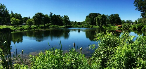 weather hoveypondpark pond reflections trees sky quotes queensburyny cf17 challengefriday july summer panorama landscape nature