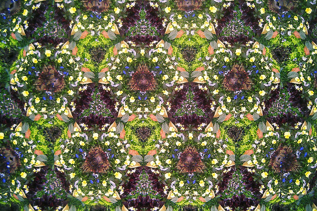 Garden Kaleidoscope At Olbrich >> The Fractured Optics Of Olbrich Botanical Gardens Smalles Flickr