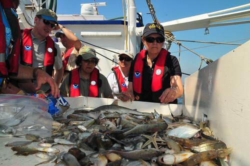 Handling Samples | by Deepwater Horizon Response