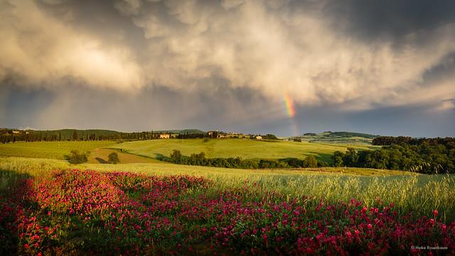 After the rain near Pienza (explore)