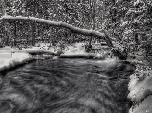 winter snow canada creek forest stream novascotia capebreton brook cs4 roundisland photomatix hdr3ex niksfilters macvicarsbrook