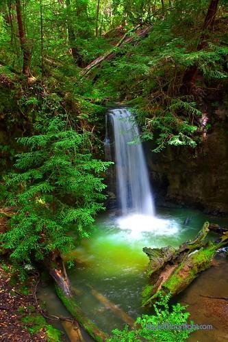 california park santa usa green america forest us waterfall big state basin cruz redwood redwoods cascade cascada sempervirens darvin atkeson カリフォルニア州 darv 캘리포니아 美国加州 liquidmoonlightcom