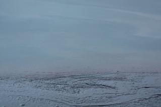 Deepwater Horizon Oil Spill – SAMPLE 19B